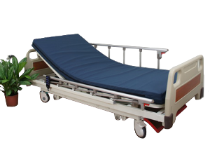 Standard Manual Bed